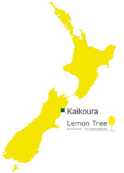 Map Kaikoura . Lemon Tree Lodge